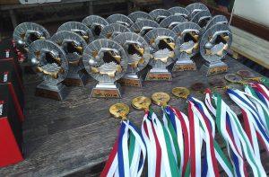 vaike_vain_medalid